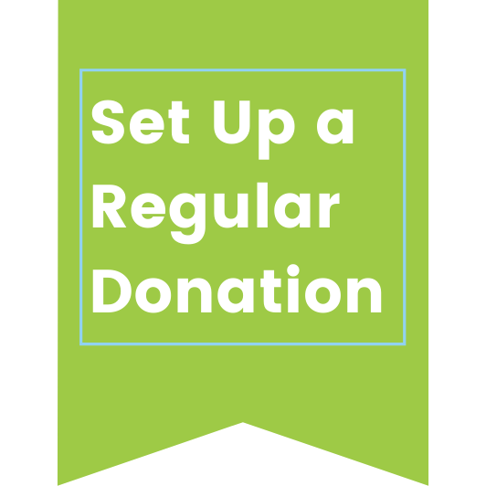 set up a regular donation